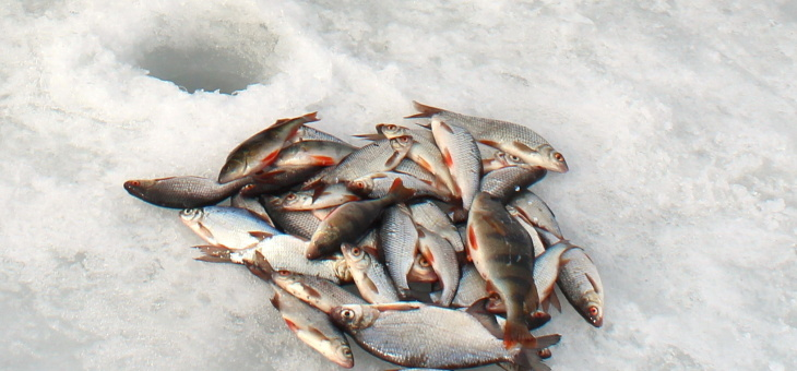 Соревнования по зимнему лову рыбы среди гэмовцев.